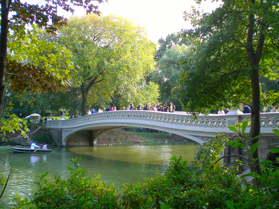 bow-bridge-amidst-changing-leaves